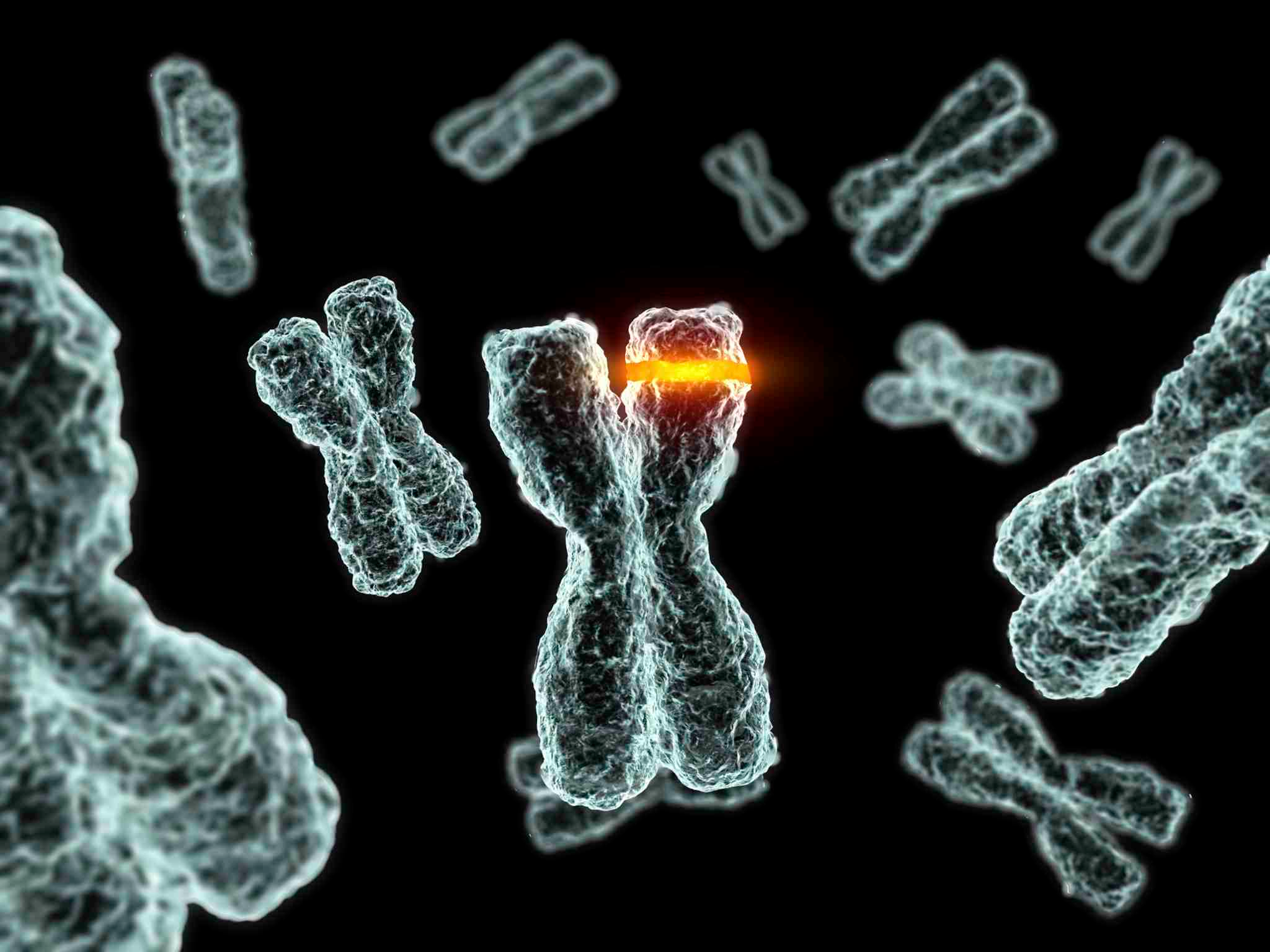 an analysis of the genetic material of a cell and the definition of a mutation Sickle cell anemia, hemophilia both gene mutation and chromosomal mutation cause alterations in the genetic material of an definition gene mutation.