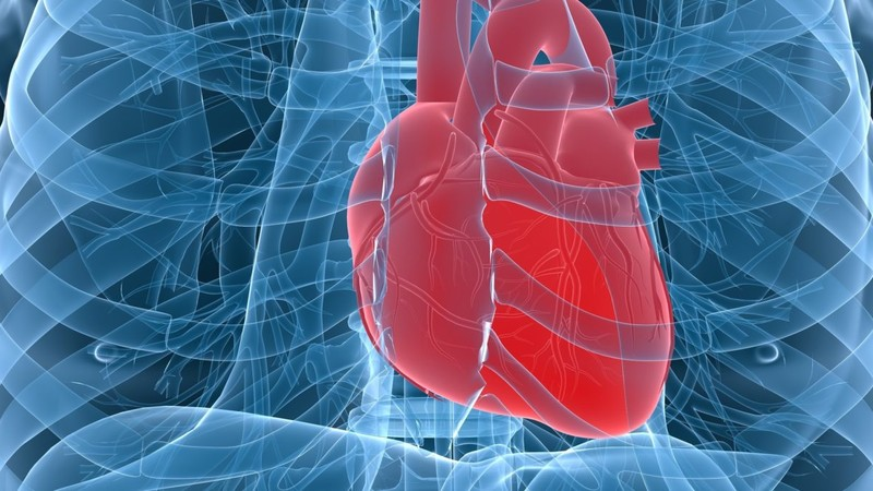 Мочекаменная болезнь и риск развития сердечно-сосудистых заболеваний