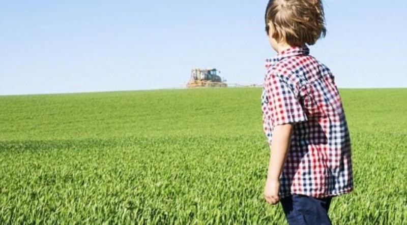 Влияние пестицидов на половое созревание мальчиков