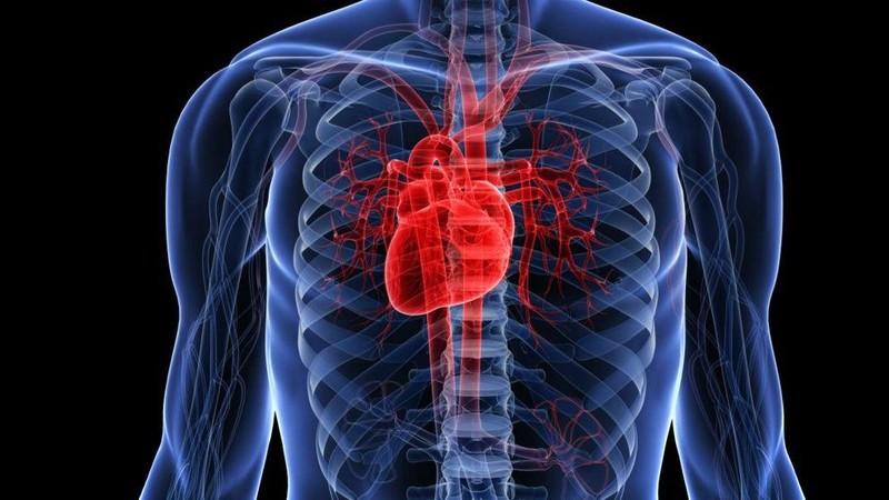 Мочекаменная болезнь и прогноз инфаркта миокарда