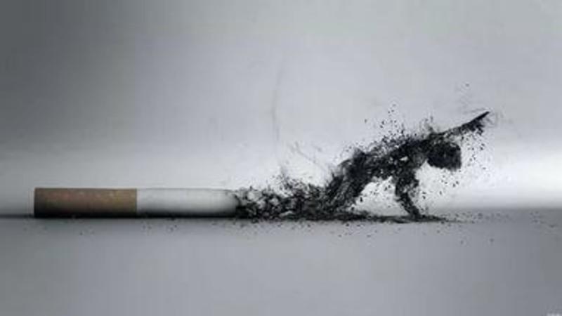 Курение, употребление алкоголя, гиподинамия и риск возникновения и рецидивирования мочекаменной болезни