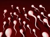 Ученые назвали причины мужского бесплодия